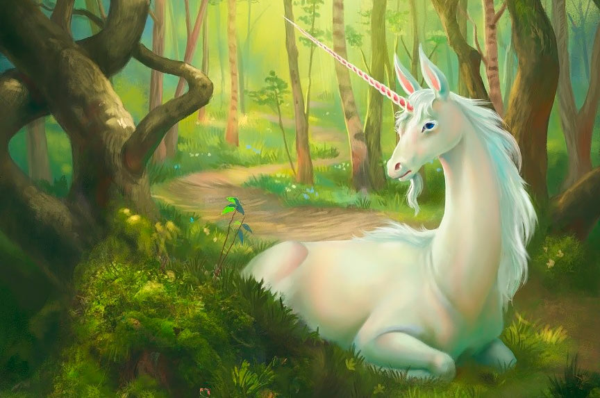 Unicornio pacífico. Imagen de Julia Metzger